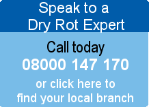 Speak to a Dry Rot Expert
