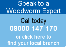 Speak to a Woodworm Expert