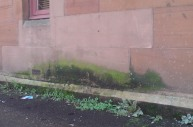Rising Damp outside a building