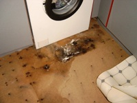 Wet Rot around the washing machine